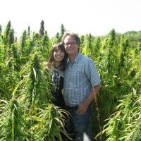 Marc Emery, Cannabis Culture and the DEA