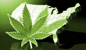 Conflicting Federal Laws beg to differ on Marijuana enforcement