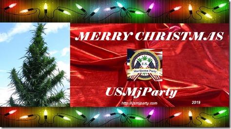 USMjParty Christmas 2019